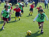 すみれ幼稚園 サッカークラブイメージ